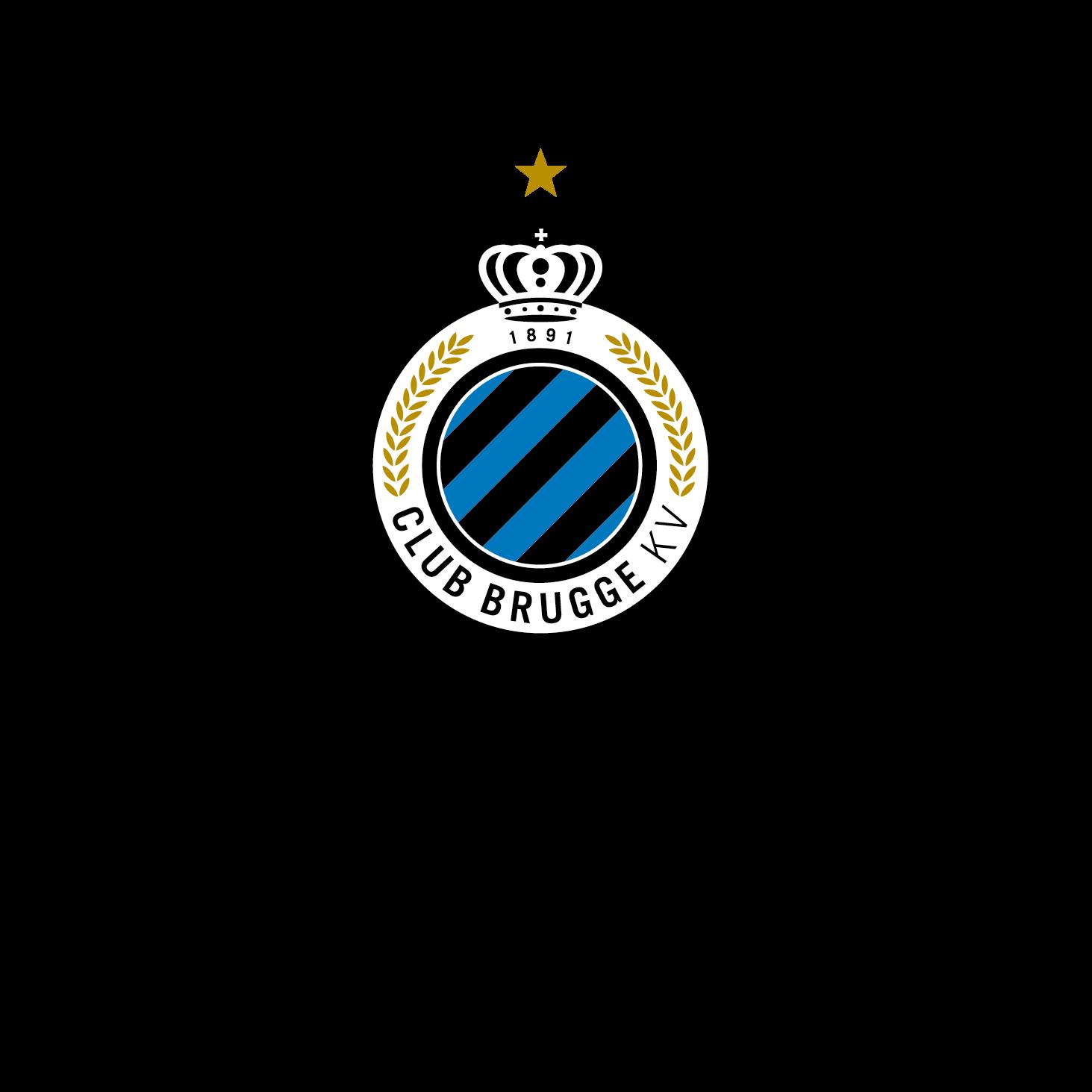 Image result for club brugge foundation