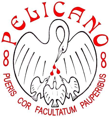 Stichting Pelicano